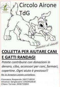 Circolo-Airone-Colletta
