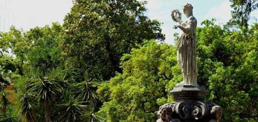 Festa dell'albero, novembre all'Orto Botanico di Napoli