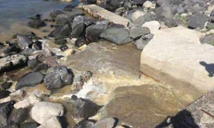 Maxi operazione della capitaneria: scoperti scarichi abusivi sul litorale vesuviano