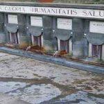 """Antiche Terme, """"Lunedì si insedierà la commissione per valutare le manifestazioni"""""""