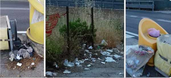 Caos rifiuti, ass. Quirino contro i dirigenti comunali