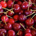 Torna la festa della ciliegia