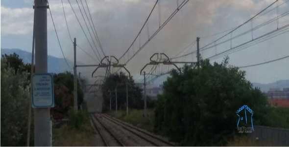 Commercio, nuovo collegamento ferroviario tra Campania e Piemonte