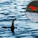 Nuovo avvistamento del Mostro di Lock Ness