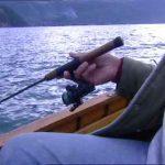 Pesca del tonno rosso, nuovo modello campano per un'equa distribuzione