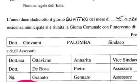 Comune Torre del Greco, l'assessore Refuto non è più avvocato