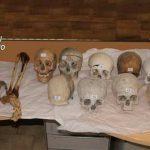 Vendevano ossa e scheletri umani su internet, 3 indagati
