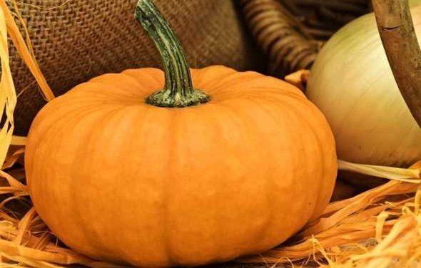 """A Eboli """"La terra delle zucche"""": come nel Regno Unito il villaggio d'autunno"""
