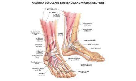 Al Caffè Gambrinusi maggiori esperti chirurghi del piede della Campania