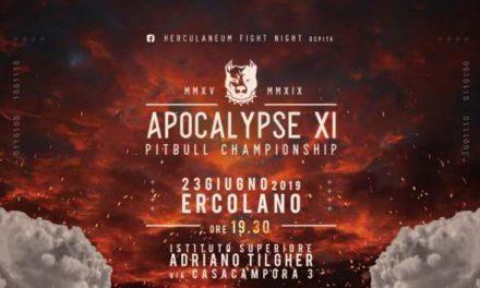 MMA, Ad Ercolano appuntamento con l'Apocalypse 🗓