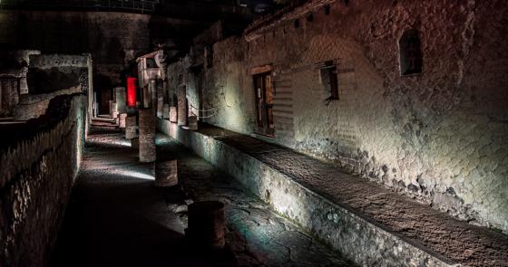 Scavi di Ercolano, Inizia il nuovo anno con la visita al Parco archeologico