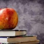 Cibo e scuola: idee per una merenda sana a tutte le età