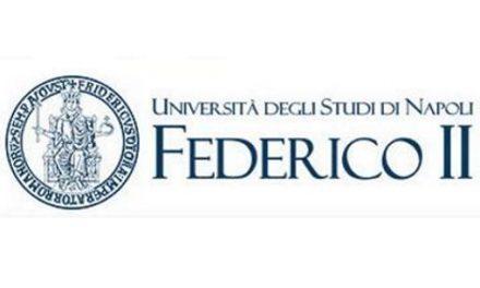 Federico II, webinar: Luci e ombre nell'esperienza della formazione a distanza durante la pandemia