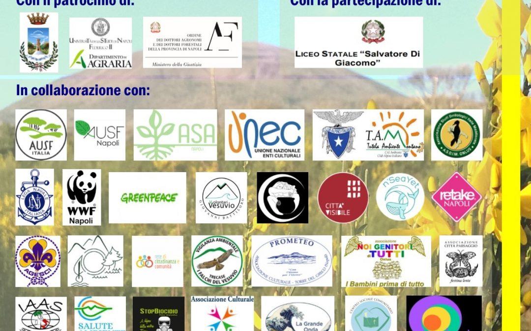 """""""Riforesti-Amo il Gigante """" progetto per la rinascita dei boschi nel Parco Nazionale del Vesuvio"""