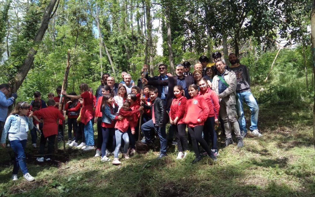 Festa dell'Albero: 1300 nuove piante messe a dimora nel Parco del Vesuvio