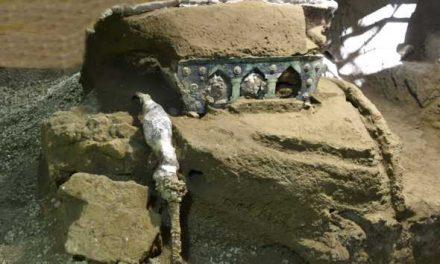 Ritrovamento straordinario negli scavi di Pompei: emerso carro da parata