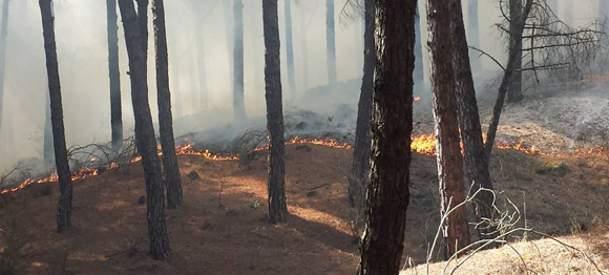 Il Vesuvio brucia ancora