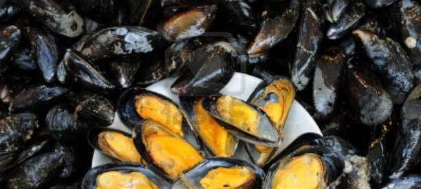 Pesca abusiva. sequestrati prodotti ittici, sanzioni di 4.000 euro