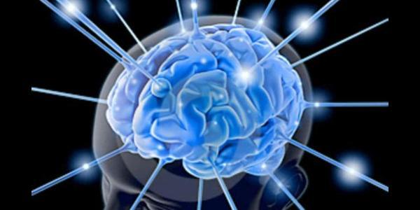 ll Neurologo