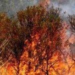 Vesuvio, opere di prevenzione contro gli incendi boschivi