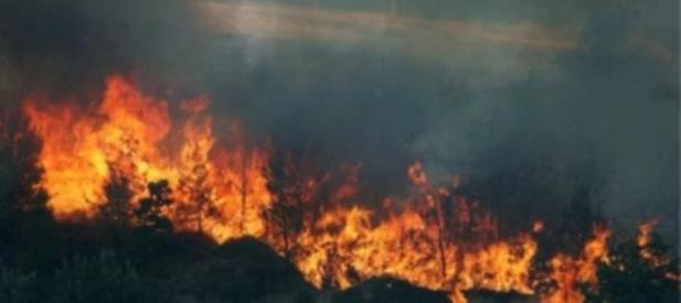 Incendi Vesuvio, M5S: Governo complice e incapace nega responsabilità